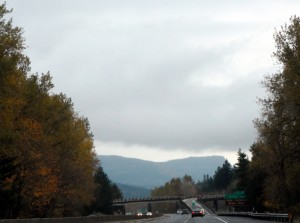 OR Columbia river gorge