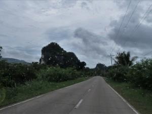 Drive to Samar (7)