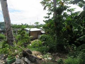 Sabong village (3)
