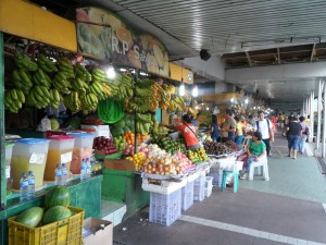 Manila flower & fruit market (3)
