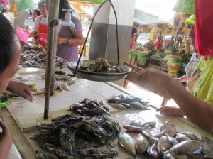 Guiuan market (7)