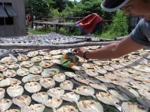 Sabong village (7)