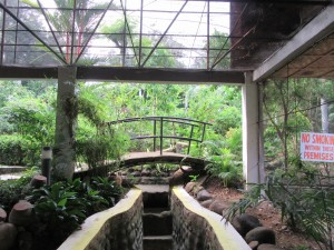 Zamboanga park and butterfly house (3)